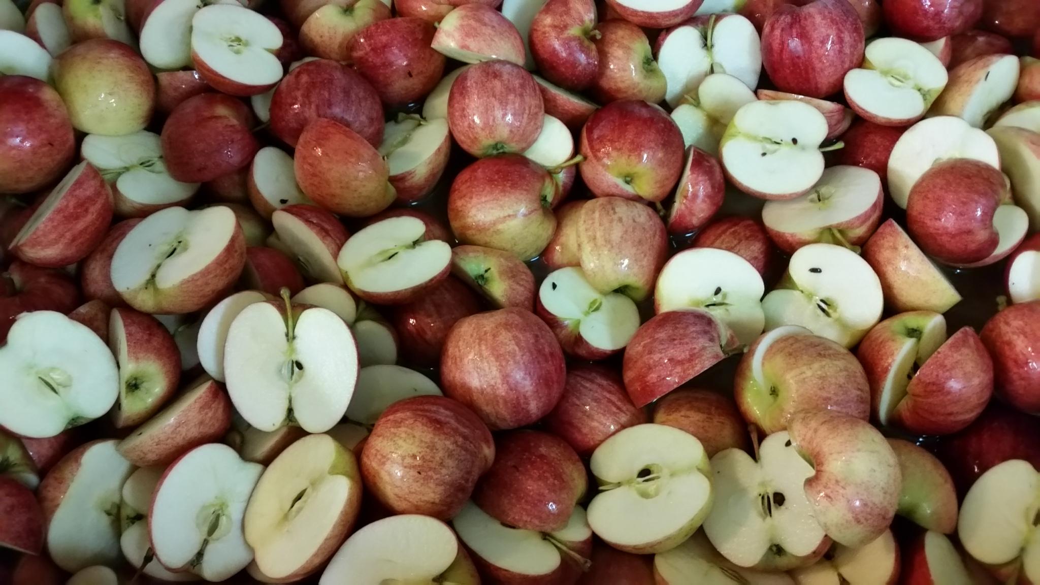 Fresh apples cut in half